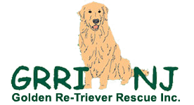 Golden Re-Triever Rescue Online Store!