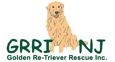 Golden Re-Triever Rescue, Inc